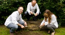 Super Seeding: Housebites chefs secretly plant fresh herbs around green areas of London