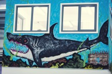 Shark wall out