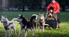 Take the Kopparberg Line: Kopparberg turns rush hour into 'mush hour' with husky rides through London