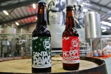 Christmas duo, Santa Paws and Hoppy Christmas