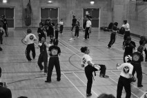 Nemesis Martial Arts Club at Loddon Valley Leisure Centre