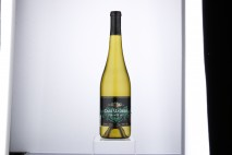 Vinicola San Lorenzo, received a Bronze medal for its Casa Madero Chenin Blanc 2014