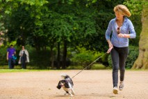 Kaye Adams supports the Fetch Pet Dinners campaign
