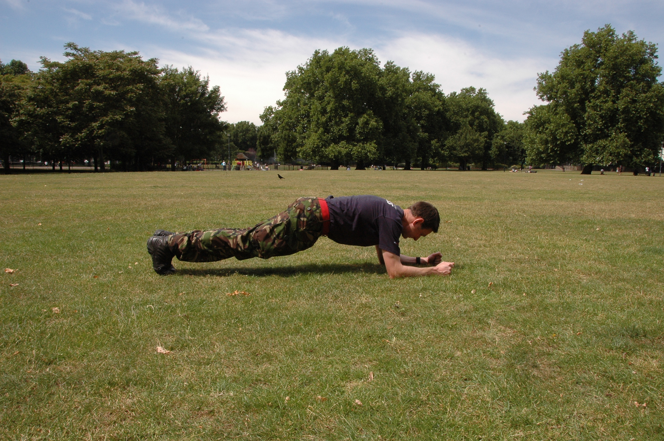 The plank is one of the most effective exercises at increasing your core and lower back strength