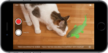 How CatQuest works on a smartphone