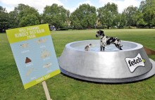 The dog bowl has been built to help keep dogs hydrated in the summer