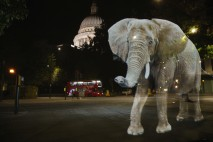 Life-sized elephant hologram spotted in Shoreditch
